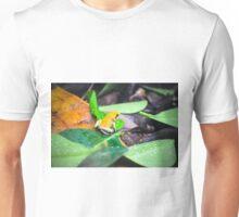 Golden Poison Dart Frog  Unisex T-Shirt