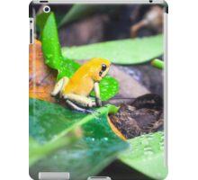 Golden Poison Dart Frog  iPad Case/Skin