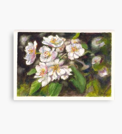 Fruit Tree Blossom Canvas Print