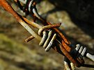 Barbed Wire by rhian mountjoy