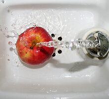 Water on Apple In Algonquin by SMerlin