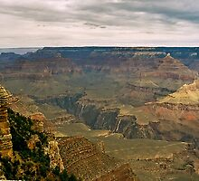 The Grand Canyon Series  - 8 To The West by Paul Gitto