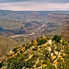The Grand Canyon Series  - 10 Colorado River by Paul Gitto