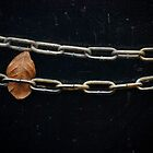 Chained Leaf by Rena Neal