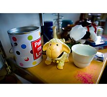 Bertie Finds A Hiding Place Among The Pots Photographic Print