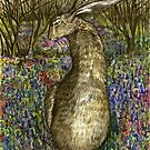 The Curious Hare by Elle J Wilson