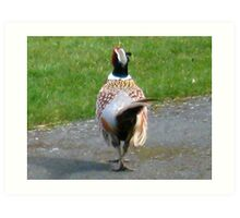 Shake a Tail Feather Art Print
