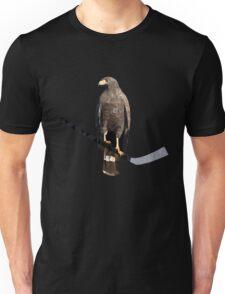Polyhawk on Black T-Shirt