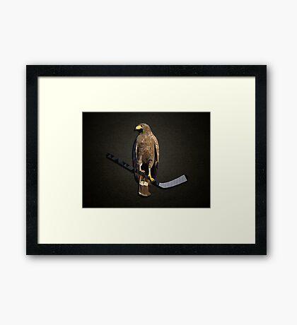 Polyhawk on Black Framed Print