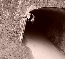 Through the tunnel and beyond  by RoseMae