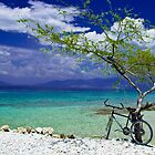 Bicyclette, Ile de la Gonave by morealtitude