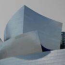 Disney Hall by Antonio Zarli