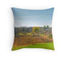 Ice Age Trails Throw Pillow