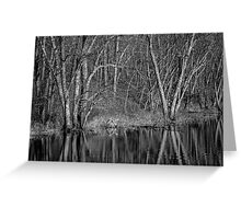 Trees Along the River Greeting Card