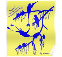 Blue booted rackettail hummingbird Poster