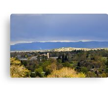 Home Of The Ducks Canvas Print
