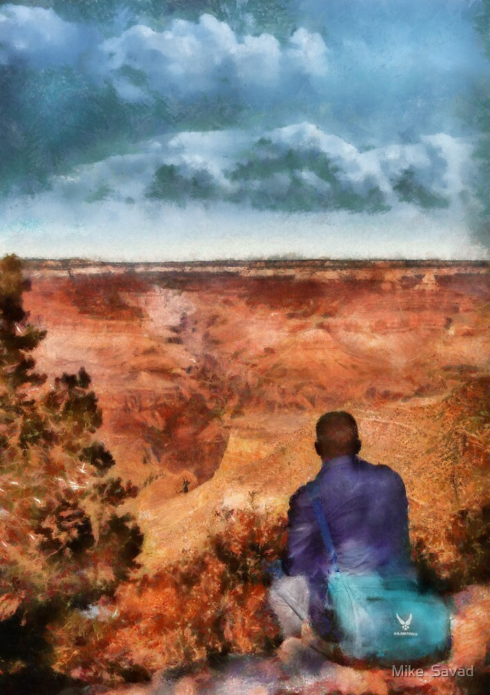 Grand Canyon - The Vista by Mike  Savad