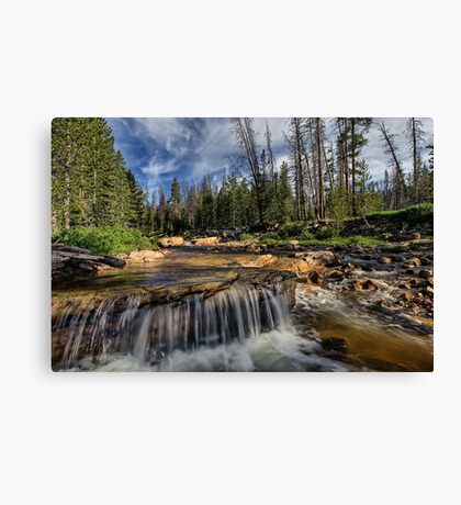 The Provo River on the Mirror Lake Highway Canvas Print