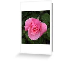 Pink rose with rain drops Greeting Card