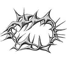 Crown of thorns Black and White Photographic Print