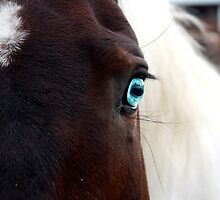Blue eyed girl by lsturges