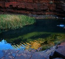 Water Hole by oddoutlet