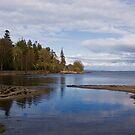 A Quiet Beach by Lynne Morris