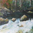 Micalong Creek by Estelle O'Brien