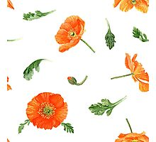 Watercolor poppies Photographic Print