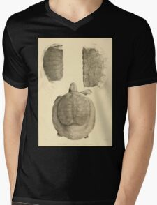 The Reptiles of British India by Albert C L G Gunther 1864 0491 Trionyx guntheri, Ornatus, Chitra Indica Turtle Mens V-Neck T-Shirt