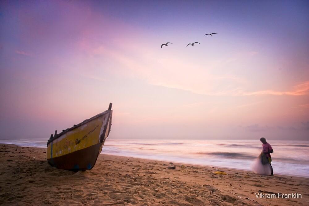 Serenity by Vikram Franklin