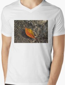 Autumn Colors and Playful Sunlight Patterns - Cherry Leaf Mens V-Neck T-Shirt