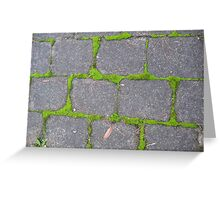 Crazy Paving in the Blue Mountains Greeting Card