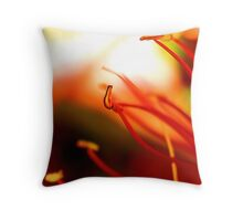 A colourful bokeh. Throw Pillow