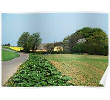 Danish countryside Poster