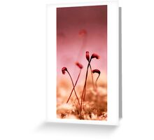 Smallworld Greeting Card