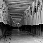 Fushimi Inara by aaronsmith