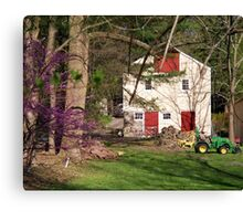 Life in the Country  Canvas Print