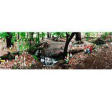 Gnomesville Panorama Photographic Print