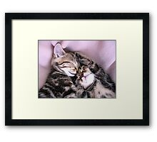 In the land of nod Framed Print