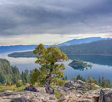 Emerald Bay by Michael Wolf