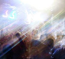 secret crowds  by S .