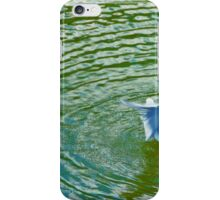 Gull Rising With Ripples iPhone Case/Skin