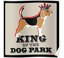 Beagle King of the Dog Park Poster