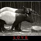 LOVE by Arkka Sandhya