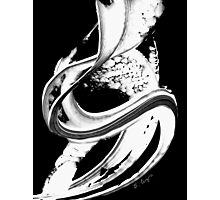 Black Magic 313 Inverted by Sharon Cummings Photographic Print