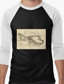 The Reptiles of British India by Albert C L G Gunther 1864 0509 Psysignathus Mentager Men's Baseball ¾ T-Shirt