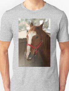 Horse In Stable T-Shirt