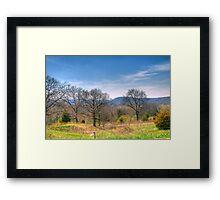 Mother Natures Canvas Framed Print