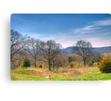 Mother Natures Canvas Canvas Print